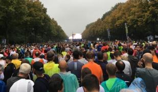 Berlin Marathon 2017 #7